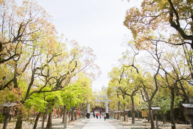 taiwan-wedding-3
