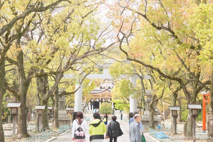 taiwan-wedding-5