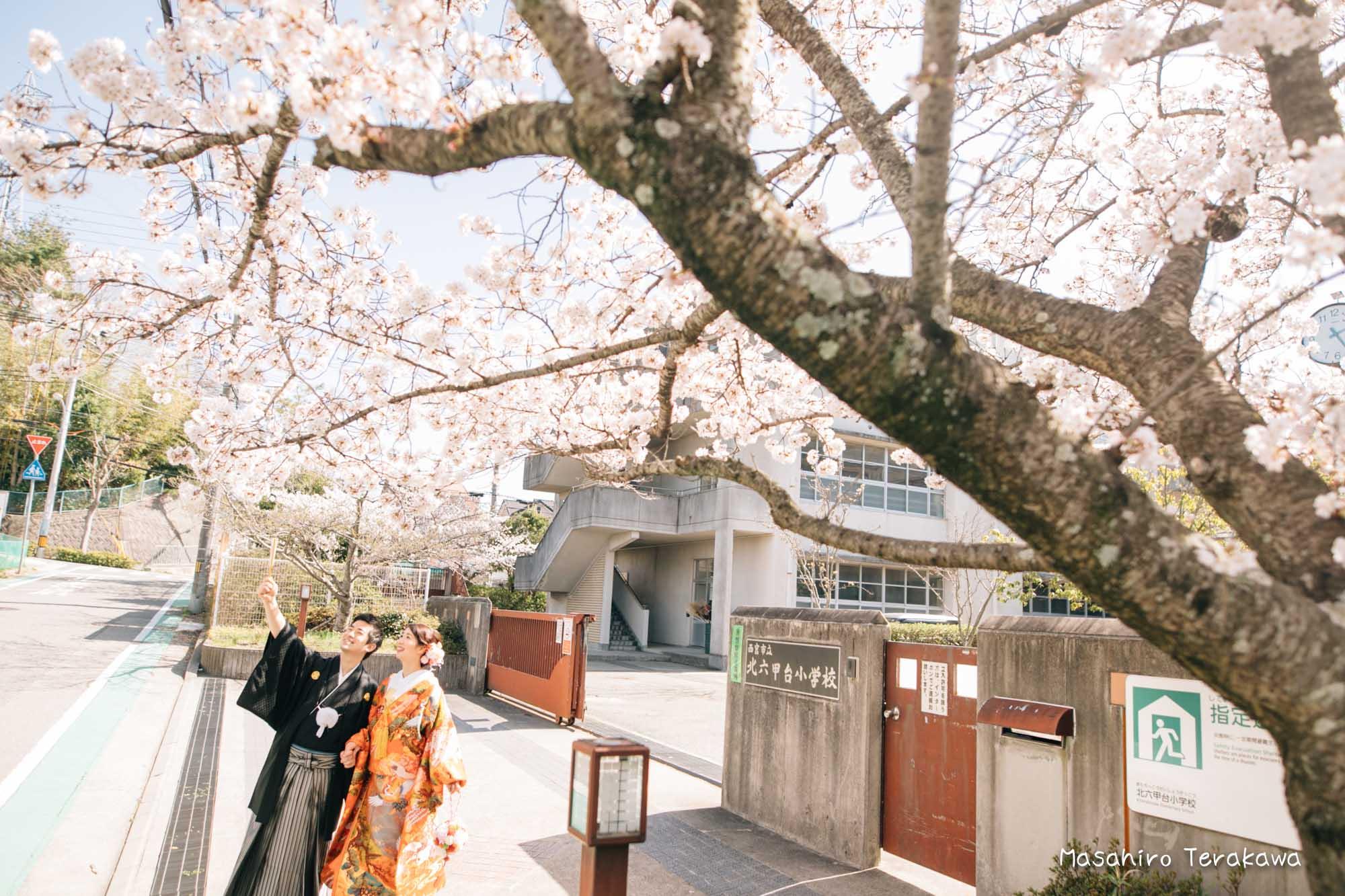 桜前撮り21