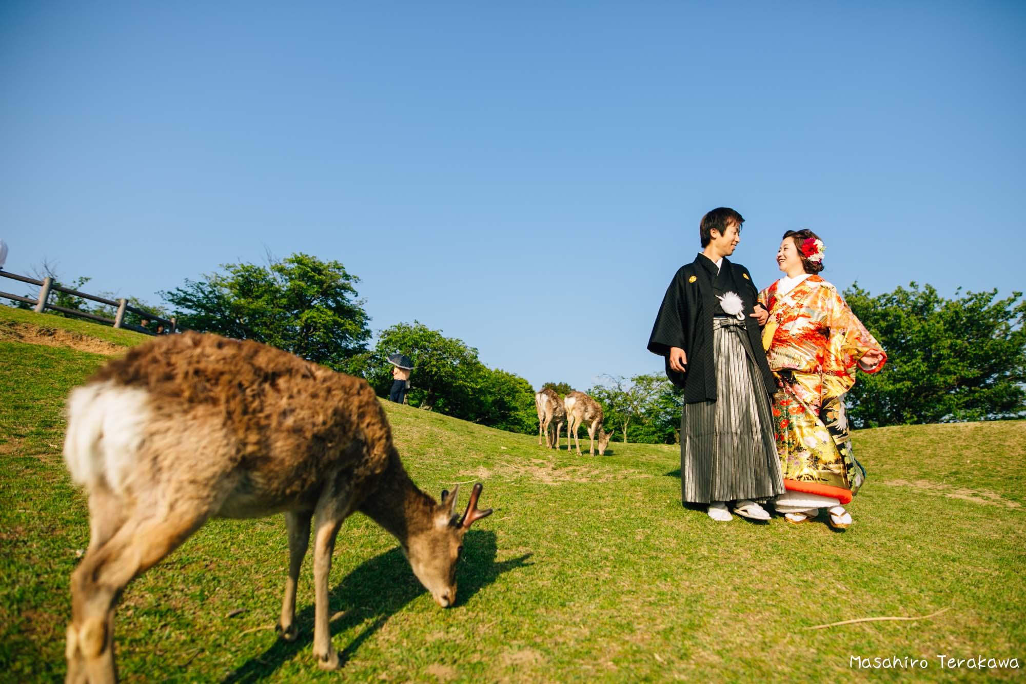 奈良和装前撮り14